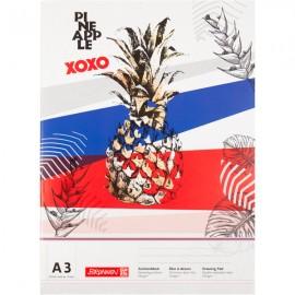Альбом для малювання /BRUNNEN/Pineapple  А3 20 арк. 100 г/м2