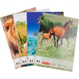 Альбом-склейка для малювання/BRUNNEN/ А3 20 арк. 100 г/м2